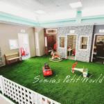 Sonia's Petit World